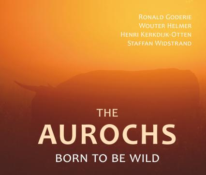The Aurochs, born to be wild