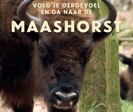 Brochure ARK op de Maashorst