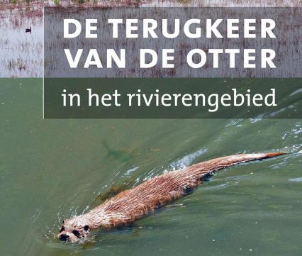 De terugkeer van de otter in het rivierengebied