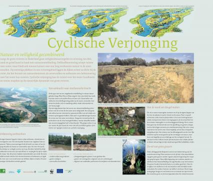 Folder Cyclische Verjonging