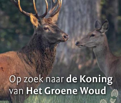 Folder Edelhert Groene Woud