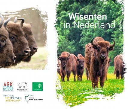 Folder Wisenten in Nederland