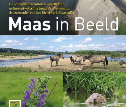 Maas in Beeld 2020
