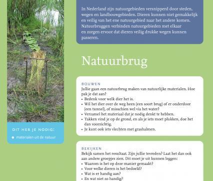 Natuurbrug