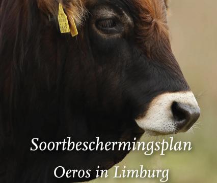 Soortbeschermingsplan Oeros