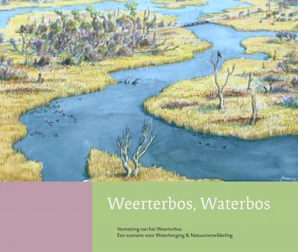 Weerterbos Waterbos